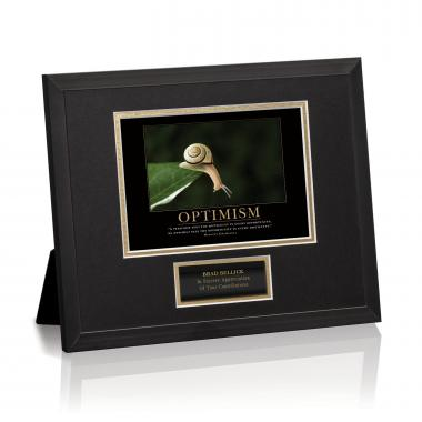 Optimism Snail Framed Award