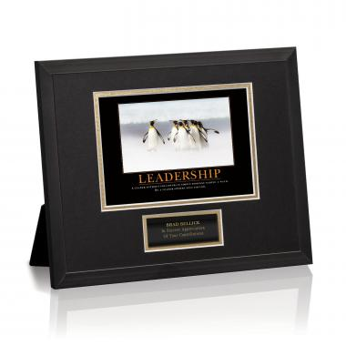 Leadership Penguins Framed Award