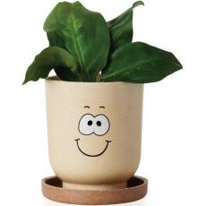 Candy, Food & Gifts - Goofy Grow Pot Eco-Planter