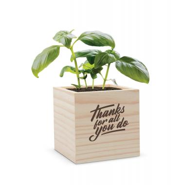 Thanks for All You Do Plant Cube