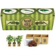 Sports & Outdoors - GrowPot Eco-Planter Herb 3 Pack