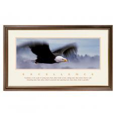 Excellence Eagle Special Edition Framed Motivational Poster