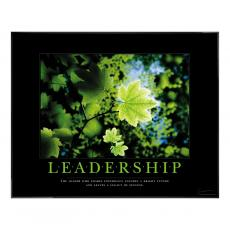 Leadership Leaf Motivational Poster
