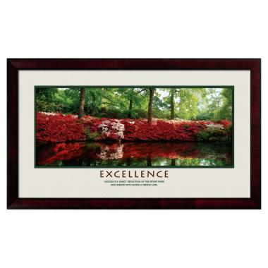 Excellence Azalea Motivational Poster