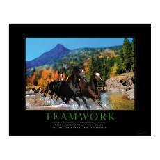 Closeout and Sale Center - Teamwork Horses Motivational Poster