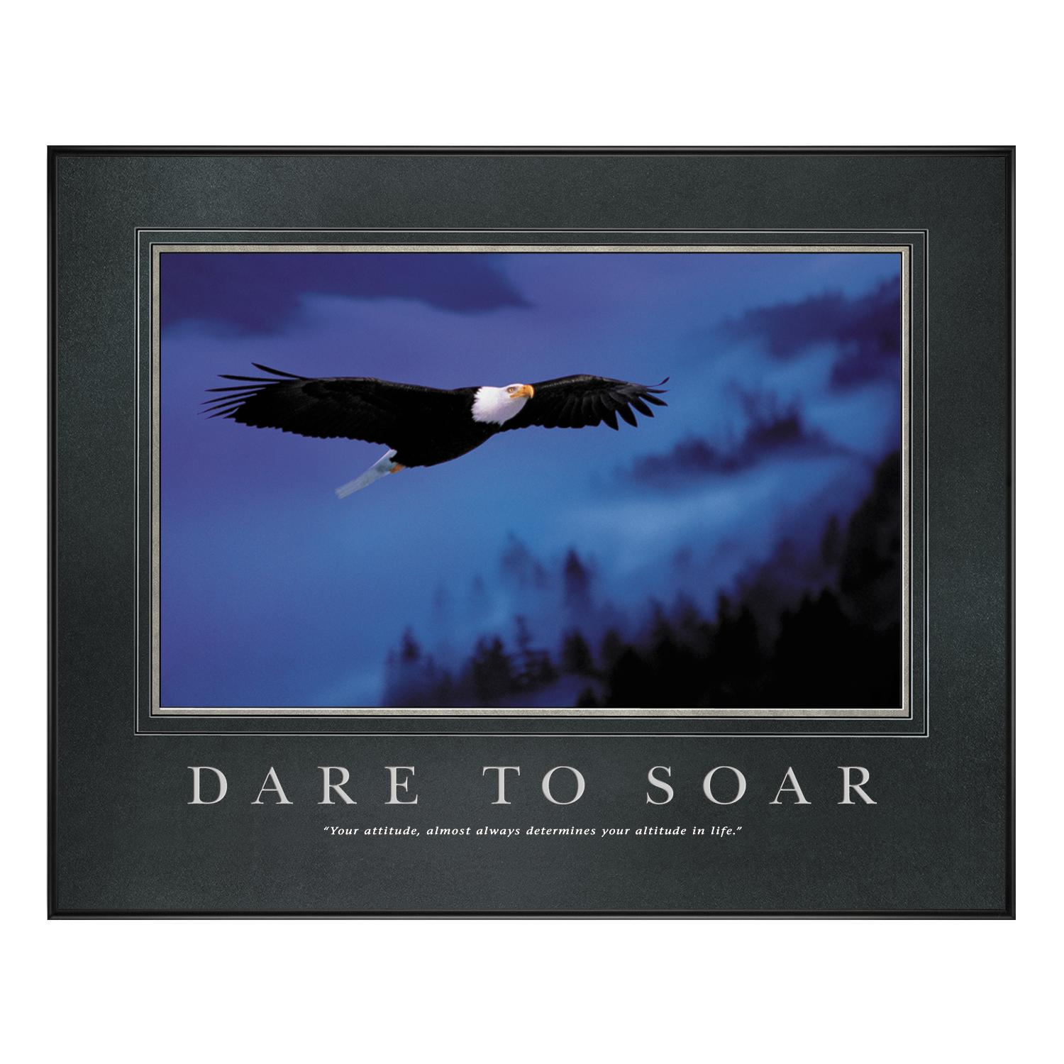 dare to soar motivational poster classic motivational posters all motivational posters. Black Bedroom Furniture Sets. Home Design Ideas