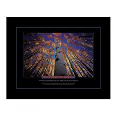 Anniversary Gifts - The Essence of Success Motivational Poster