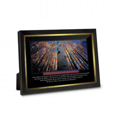 Essence of Success Framed Desktop Print
