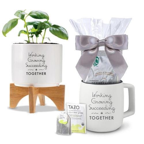 Holiday Gift Box - Modern Planter & Mug with Starbucks