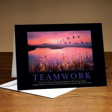 Teamwork Cranes 25-Pack Greeting Cards