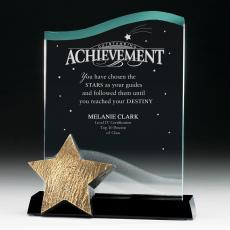 Star Awards - Catch a Star Achievement Acrylic  Award