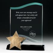 Catch a Star Achievement Acrylic  Award <span>(753069)</span> (753069) - $89.99
