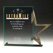 Extra Mile Guiding Star Award