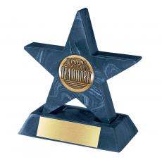 Navy Mini Star with Base Award