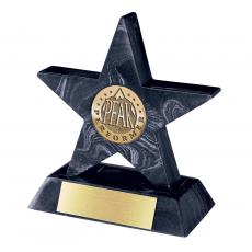 Metal, Stone and Cast Awards - Black Mini Star with Base Award