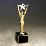 Large Star Achiever Award