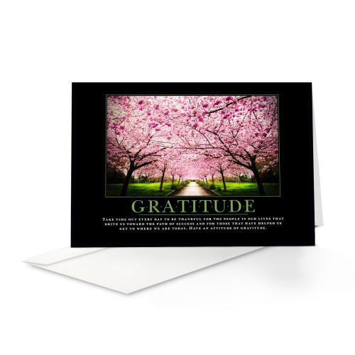 Gratitude Cherry Blossoms Greeting Cards