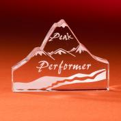 Peak Performer Award