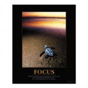 Focus Sea Turtle Motivational Poster