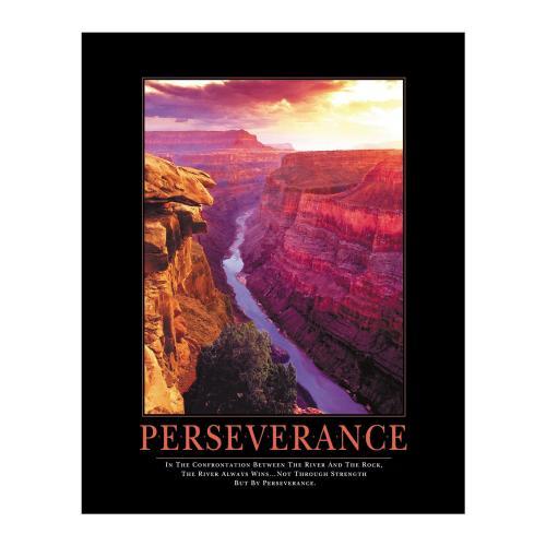 Perseverance Motivational Poster