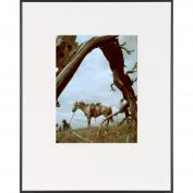 Rancher and Horse-LIFE Magazine Fine Art Collection