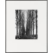 Tree Lined Road-LIFE Magazine Fine Art Collection