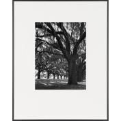 Oak Tree Road-LIFE Magazine Fine Art Collection