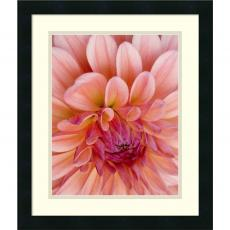 All Motivational Posters - Jim Christensen Graphic Dahlia II Office Art