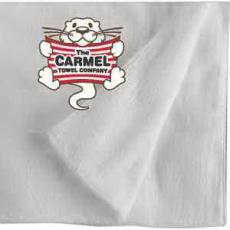 Home & Family - Carmel Towel Company All Terry Beach Towel