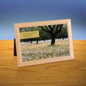 Dandelions iQuote Desktop Print