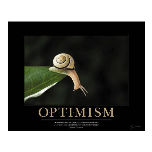 Optimism Snail Motivational Poster