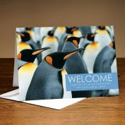Welcome Penguin 25-Pack Greeting Cards