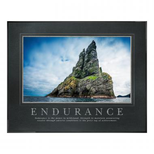 Endurance Island Motivational Poster