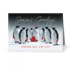 New Products - Jolly Penguin Holiday Card Pack