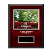 Excellence Azalea Rosewood Individual Award Plaque