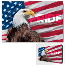 Pride Eagle Infinity Edge Wall Decor