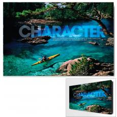 All Motivational Posters - Character Kayaker Motivational Art