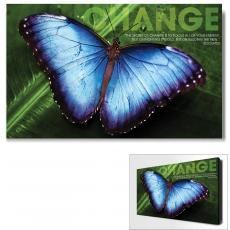 Modern Motivational Art - Change Butterfly Motivational Art