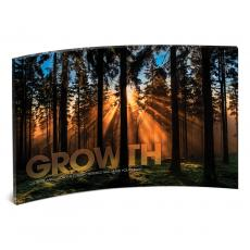 Acrylic Desktop Prints - Growth Forest Curved Desktop Acrylic