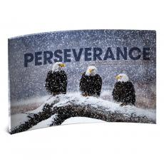 Modern Motivational Prints - Perseverance Eagles Curved Desktop Acrylic