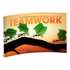 Modern Motivational Prints - Teamwork Ants Curved Desktop Acrylic