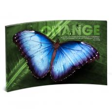 Modern Motivational Prints - Change Butterfly Curved Desktop Acrylic