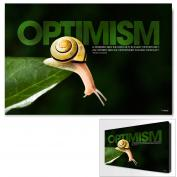 Optimism Snail Infinity Edge Wall Decor