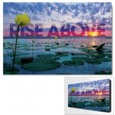 Modern Motivational Posters - Rise Above Lily Pad Motivational Art