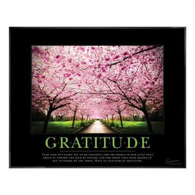 Gratitude Cherry Blossoms Motivational Poster