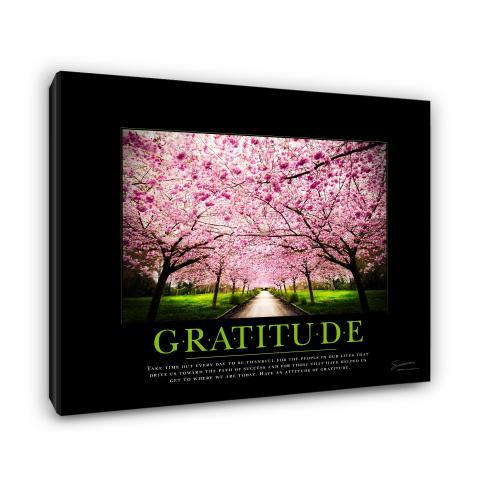 Gratitude Cherry Blossoms Motivational Poster