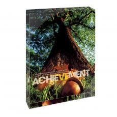 Modern Motivation - Achievement Oak Infinity Edge Acrylic Desktop