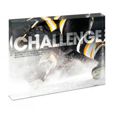 Entire Collection - Challenge Hockey Infinity Edge Acrylic Desktop