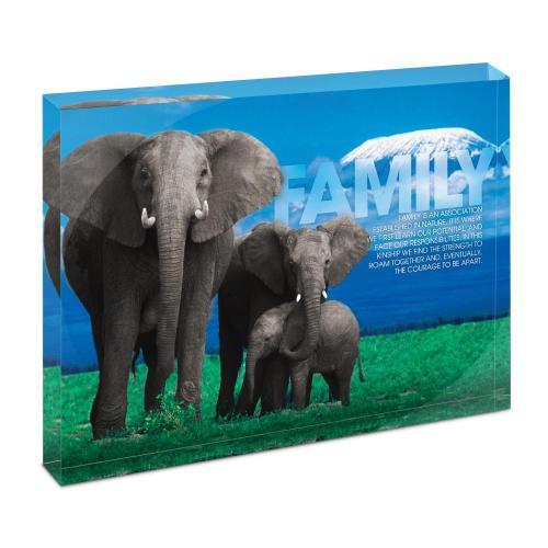 Family Elephants Infinity Edge Acrylic Desktop