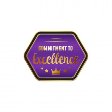 Commitment to Excellence Purple Lapel Pin
